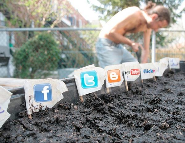 7 полезных советов по ведению рекламных кампаний в Facebook